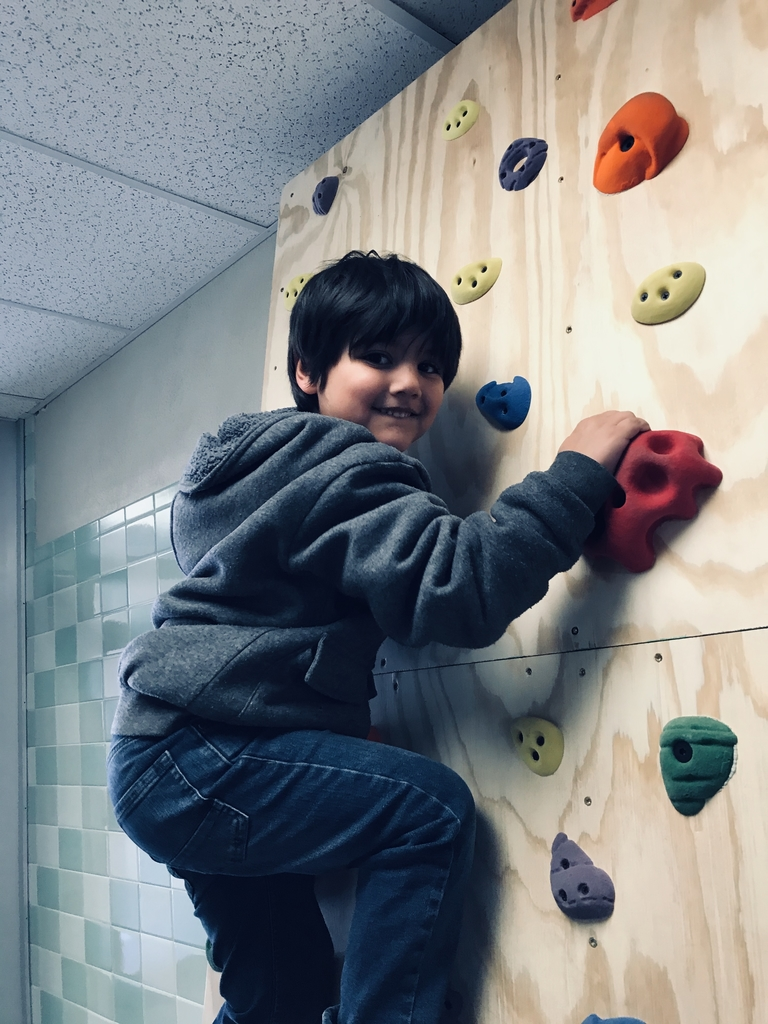 LGS rock wall is awesome!