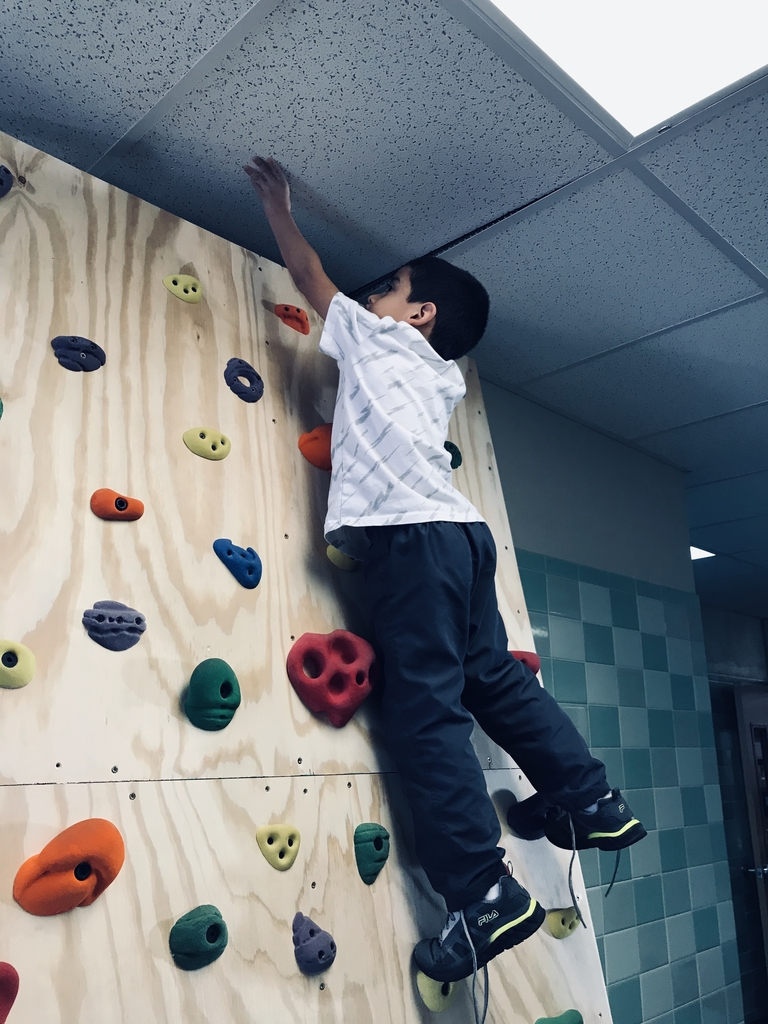 LGS rock wall! Thank you for the rock wall!